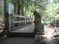 Ricketts Glen State Park Footbridge 1.jpg