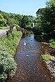 River Dall - geograph.org.uk - 467684.jpg