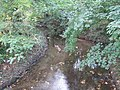 River Pinn in Ickenham - geograph.org.uk - 577625.jpg