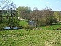 River Wye between Bakewell and Haddon Hall - geograph.org.uk - 1264406.jpg