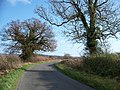 Road to Oddington - geograph.org.uk - 1602988.jpg