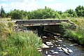 Roadbridge over Afon Ystumiau - geograph.org.uk - 207407.jpg