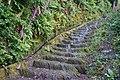 Roman Steps, Machynlleth.jpg