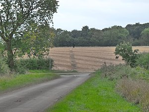 Mareham Lane - Image: Roman alignment, Graby (geograph 3156060)