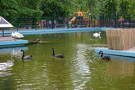 Rostov-na-Donu Park Revolucii.jpg