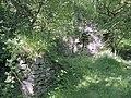 Ruin beside Lower Clydach River - geograph.org.uk - 846487.jpg