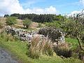 Ruin beside the road up Bencroy - geograph.org.uk - 1586716.jpg
