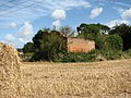 Ruined building in field near Plumstead Green - geograph.org.uk - 544905.jpg