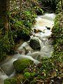 Ruisseau1.jpg