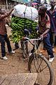 Rwanda plantains2.jpg