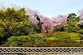 Ryoan-ji, Precincts -1 (April 2016) - panoramio.jpg