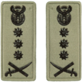 SANDF Rank Insignia Lt General embossed badge.png