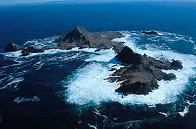 Southeast Farallon Islands from the west, with Maintop Island in the foreground (right)