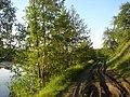 Sad, Sums'ka oblast, Ukraine, 42343 - panoramio (2).jpg
