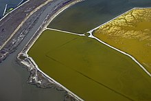 This image depicts three salt ponds adjacent to each other, ranging in color from deep green to mustard yellow.