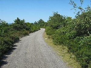 Sam's Point Preserve - Image: Sams Fire Road