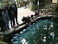 Sanctuaire Yeagaki - Mirroir d'eau (prediction).JPG