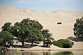 Sand Dunes around the Oasis at Huacachina (6988255680).jpg