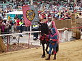Santa Maria Nuova - Cavaliere con armatura e vessillo in campo del Palio.JPG