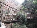 Saru no kazurabashi2.jpg