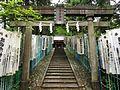 Sarutahiko-jinja (Nikko, Tochigi) torii.jpg
