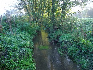 Hanworth, Norfolk - Scarrow Beck on Hanworth Common