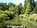Schlosspark Wilhelmshöhe Flora 01.jpg