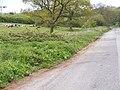Scotland Lane - geograph.org.uk - 2074965.jpg