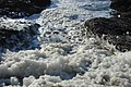 Sea Foam at Beavertail JamestownRI 20060109.jpg