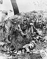 Seabees inspecting dead Japanese corpses in Cape Gloucester.jpg