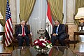 Secretary Tillerson Meets With Egyptian Foreign Minister Shoukry (28447352629).jpg