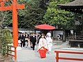 Shimogamo-Jingya National Treasure World heritage Kyoto 国宝・世界遺産 下鴨神社 京都40.JPG