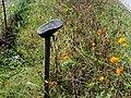 Shoe on a Stick South Toe River Celo Camp NC 4272 (37947595681).jpg