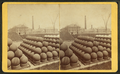 Shot park, Boston Navy Yard, by Alden, A. E., 1837-.png