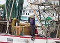 Shrimp boat worker.JPG