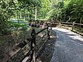Sligo Creek Trail Kemp Mill 27.jpg