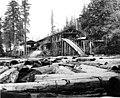 Snoqualmie Mill Co mill, Snoqualmie, Washington, ca 1895 (INDOCC 299).jpg