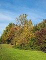 Snuff Mill Lane, Cottingham IMG 7670 - panoramio.jpg