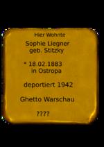 Sophie Liegner