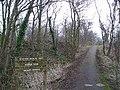 Sourlie Wood - geograph.org.uk - 125221.jpg
