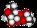 Spectinomycin-3D-vdW.png