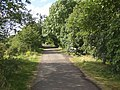 Spen Valley Greenway, Cleckheaton - geograph.org.uk - 525925.jpg
