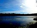 Spruce Lake - panoramio (1).jpg