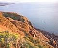 St Bees Head Cliffs. - geograph.org.uk - 96278.jpg