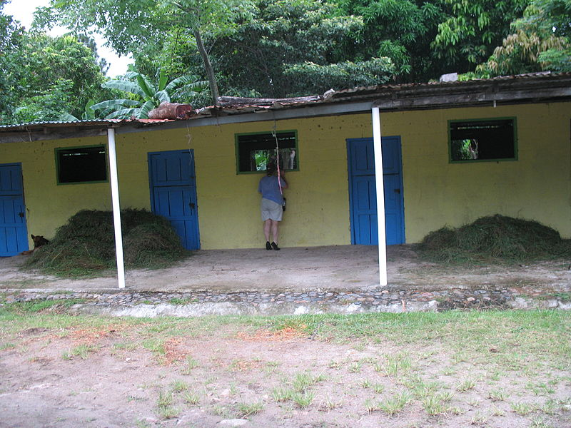 File:Stable in Panama - 20060721.jpg