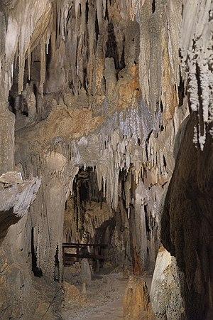 Ngarua Caves - Stalactites above walkway through Ngarua Caves