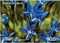 Stamp of Azerbaijan - 2019 - Colnect 922518 - Flowers of Nakhichevan - Gentiana angulosa Bieb.jpeg
