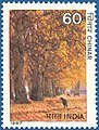 Stamp of India - 1987 - Colnect 164980 - Indian Trees - Chinar.jpeg