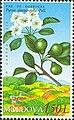Stamp of Moldova md502.jpg