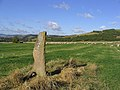 Standing stone at Bemersyde - geograph.org.uk - 586911.jpg